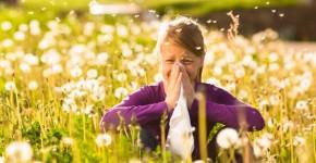 allergia 1