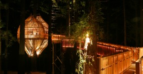 Újzéland Redwood Treehouse