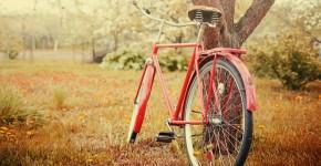 bicikli 1