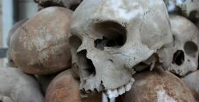 skulls-1433178_960_720