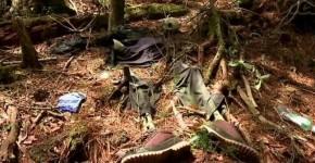 hutan-ini-tempat-bunuh-diri-favorit-orang-jepang